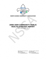 NSCA Community Public Health Strategy 08-09